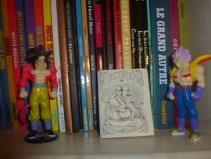 bibliothequeMael